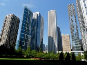 New York grattacieli nel bosco