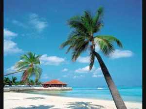 isola dei Caraibi