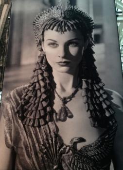 M.R.Madonna
