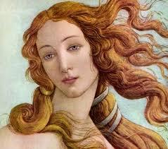 Venere particolare Botticelli