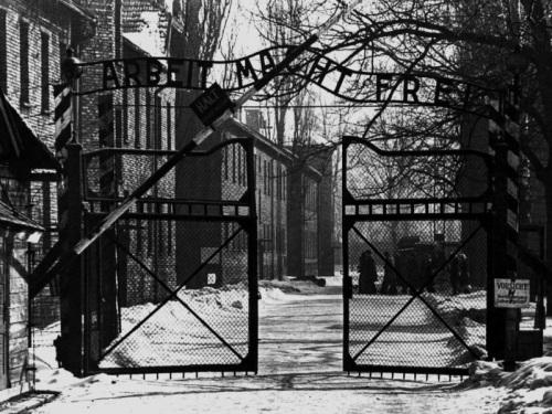 Auschwitz Ingresso