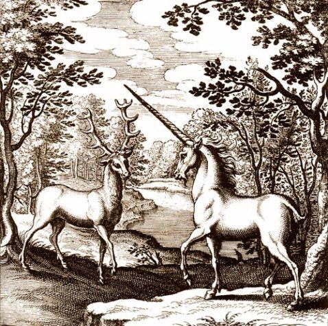 cardini cervo_unicorno