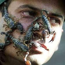 scorpione uomo