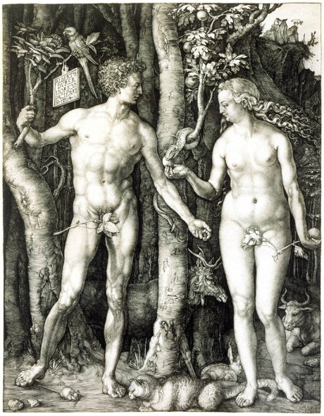 Albrecht Durer The Fall of Man (Adam and Eve) 1504