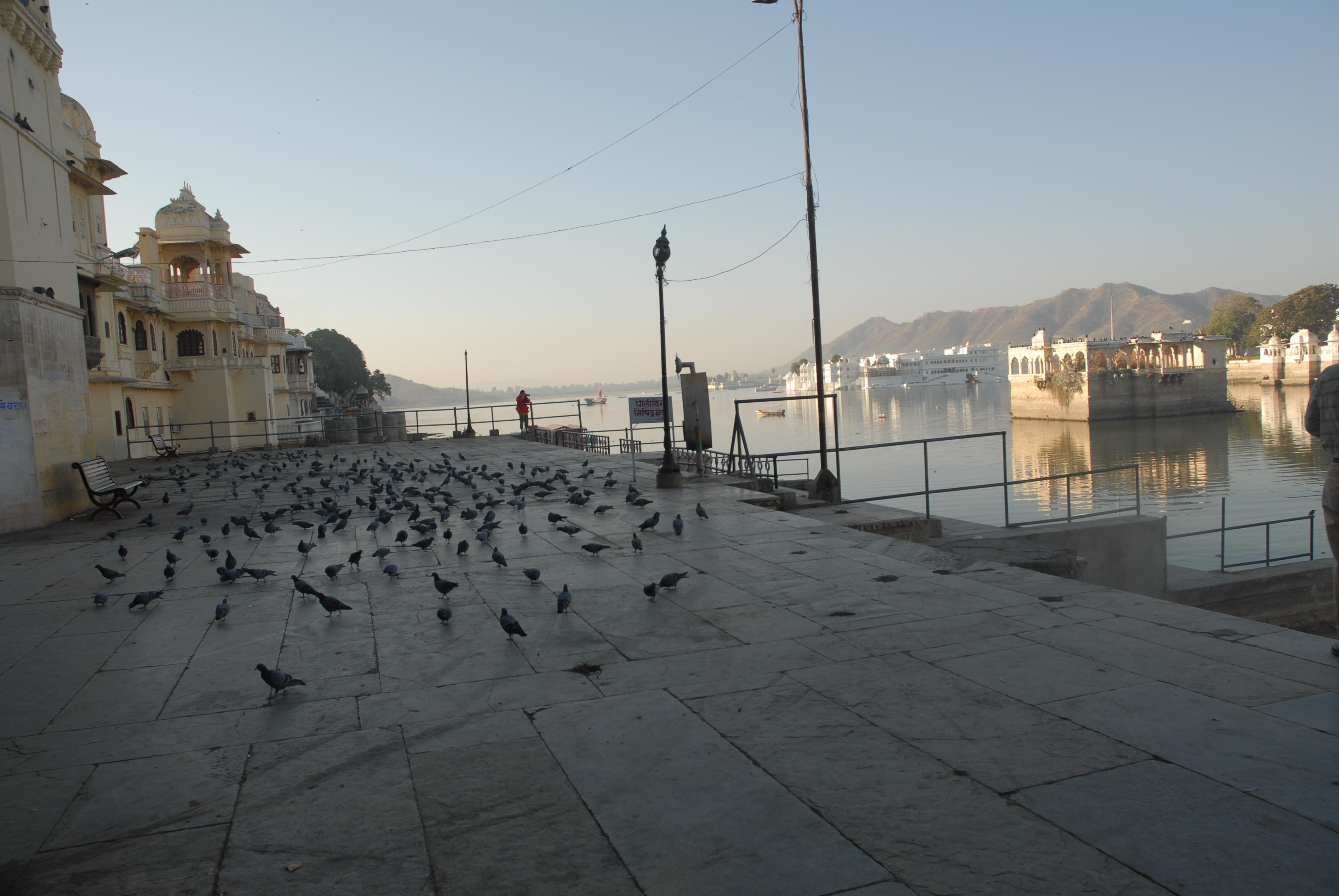 steven grieco piccioni sul terrazzo