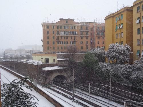 Roma neve