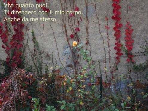 Figure haiku 1 Lucio Mayoor Tosi
