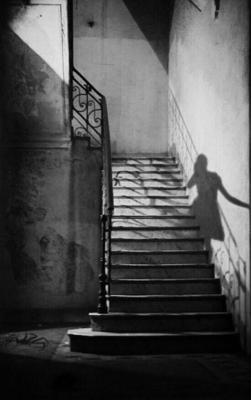 foto Ombra sulle scale