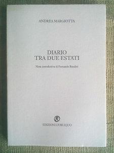 Andrea margiotta Diario tra due estati cover