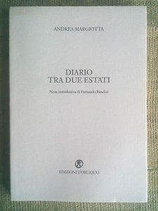 Andrea margiotta Diario tra due estati cover