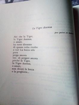 Cristina Campo poesia La Tigre Assenza