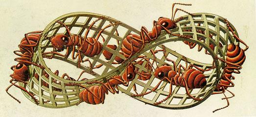Escher moebius