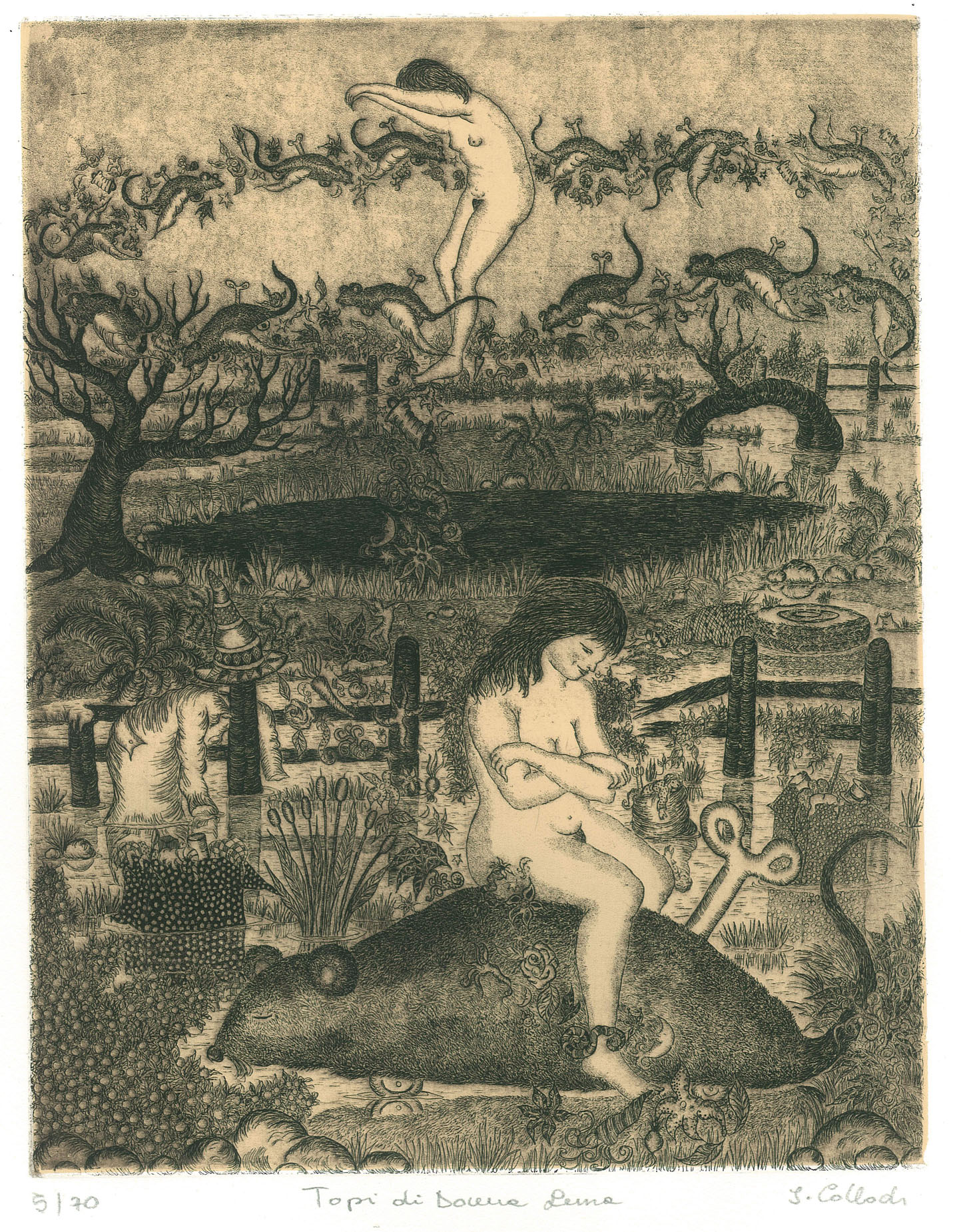 Isabella Collodi, acquaforte, topi di donna luna